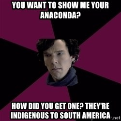 Sexually Oblivious Sherlock - you want to show me your anaconda? how did you get one? they're indigenous to south america