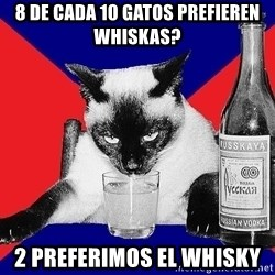 Alco-cat - 8 de cada 10 gatos prefieren whiskas? 2 preferimos el whisky