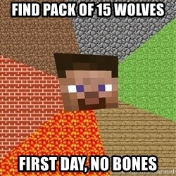 Minecraft Guy - Find pack of 15 wolves first day, no bones