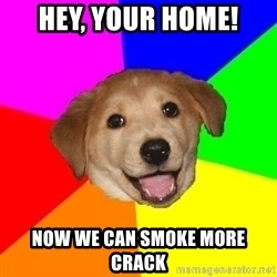 Advice Dog - hey, your home! now we can smoke more crack