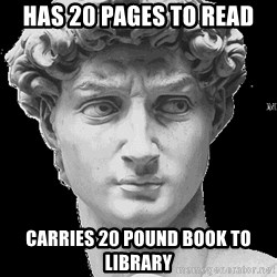 David Art History - has 20 pages to read carries 20 pound book to library