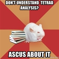 Science Major Mouse - don't understand  tetrad analysis? ascus about it