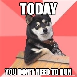 Cool Dog - Today You don't need to run