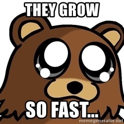 Pedobear Triste - they grow so fast...