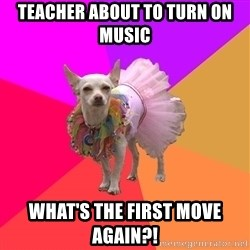 Ballet Chihuahua - Teacher about to turn on music what's the first move again?!
