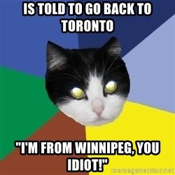 """Winnipeg Cat - Is told to go back to Toronto """"I'm from wInNipeg, you idiot!"""""""
