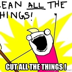clean all the things -  CUT ALL THE THINGS !