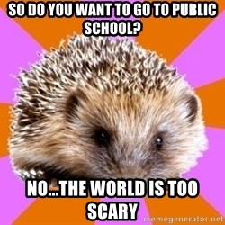 Homeschooled Hedgehog - So do you want to go to public school? No...the world is too scary