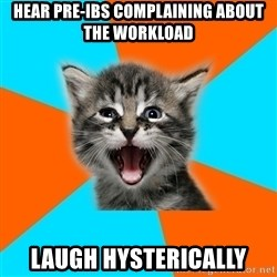 Ib Kitten - hear pre-ibs complaining about the workload laugh hysterically