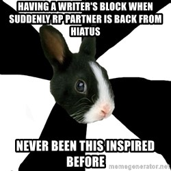 Roleplaying Rabbit - having a writer's block when suddenly RP pARTNER IS BACK FROM HIATUS never been this inspired before