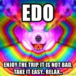Final Advice Dog - Edo ENJOY THE TRIP, IT IS NOT BAD, TAKE IT EASY.. RELAX..