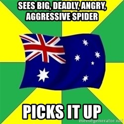 Typical Aussie - Sees big, deadly, angry, aggressive spider picks it up