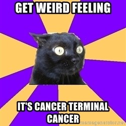 Anxiety Cat - GET WEIRD FEELING IT'S CANCER TERMINAL CANCER