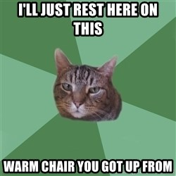 fyeahassholecat - I'll just rest here on this Warm Chair you got up from