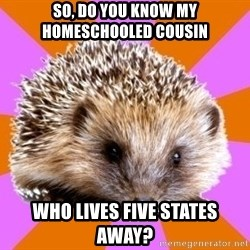 Homeschooled Hedgehog - So, do you know my homeschooled cousin who lives five states away?