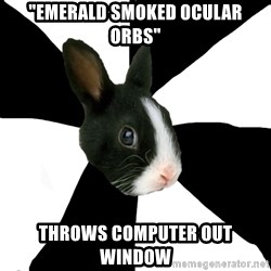 """Roleplaying Rabbit - """"Emerald smoked ocular orbs"""" Throws computer out window"""