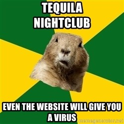 Saskatoon Dog - Tequila                 Nightclub even the website will give you a virus