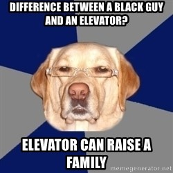 Racist Dawg - Difference between a black guy and an elevator? Elevator can raise a family