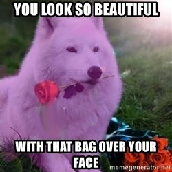 Don Courage Wolf - you look so beautiful with that bag over your face