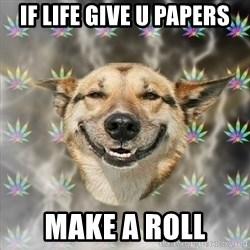 Stoner Dog - if life give u papers make a roll