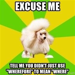 "Pretentious Theatre Kid Poodle - Excuse me Tell me you Didn't just use ""Wherefore"" to mean ""where"""
