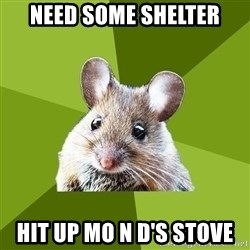 Prospective Museum Professional Mouse - need some shelter hit up mo n d's stove