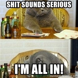 Poker Cat - shit sounds serious i'm all in!