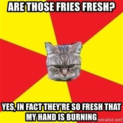 Fast Food Feline - Are those fries fresh? yes, in fact they're so fresh that my hand is burning