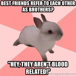 "Roleplay Shipper Bunny - best friends refer to each other as brothers? ""hey, they aren't blood related!"""