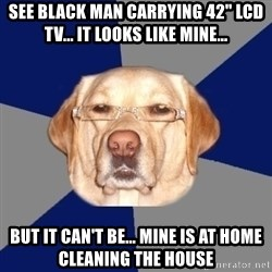 """Racist Dog - See black man carrying 42"""" LCD TV... it looks like mine... but it can't be... mine is at home cleaning the house"""