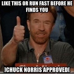 Chuck Norris Approves - Like this or run fast before he finds you ]chuck norris approved[
