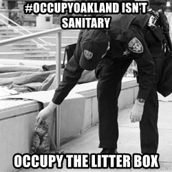 Oakland Riot Cat - #occupyoakland isn't sanitary occupy the litter box