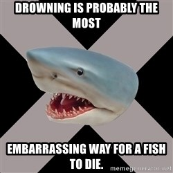Straight Edge Shark - Drowning is probably the most EMBARRASSING WAY FOR A FISH TO DIE.