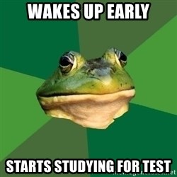 Foul Bachelor Frog - wakes up early starts studying for test