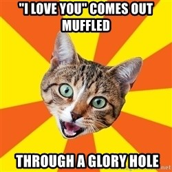 """Bad Advice Cat - """"I love you"""" comes out muffled  THROUGH A GLORY HOLE"""