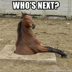 Hole Horse - who's next?
