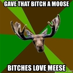 Steve Moose - GAVE THAT BITCH A MOOSE BITCHES LOVE MEESE