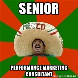 Successful Mexican - SENIOR performance marketing consultant