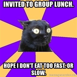 Anxiety Cat - Invited to group lunch. hope i don't eat too fast. or slow.