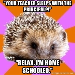 "Homeschooled Hedgehog - ""YOUR TEACHER SLEEPS WITH THE PRINCIPAL?!"" ""rELAX. i'M HOME SCHOOLED."""