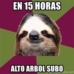 Just-Lazy-Sloth - en 15 horas alto arbol subo