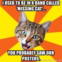 Bad Advice Cat - I used to be in a band called 'Missing Cat'... You probably saw our posters.