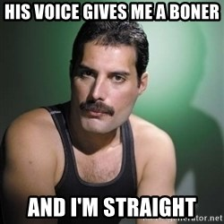 Freddie Mercury - hIS VOICE GIVES ME A BONER AND I'M STRAIGHT