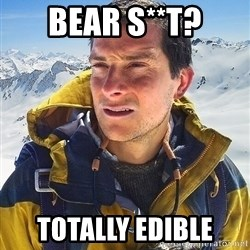 Bear Grylls Loneliness - bear s**t? totally edible