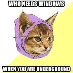Hipster Kitty - Who needs windows when you are underground
