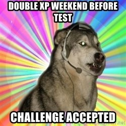 Gamer Dog - Double xp weekend before test CHALLENGE accepted