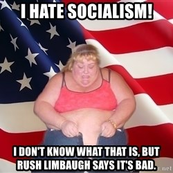 Asinine America - I hate socialism! i don't know what that is, but rush limbaugh says it's bad.