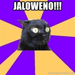 Anxiety Cat - JALOWENO!!!