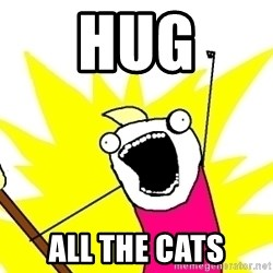 X ALL THE THINGS - Hug all the cats