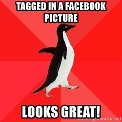 Socially Awesome Penguin - tagged in a facebook picture looks great!